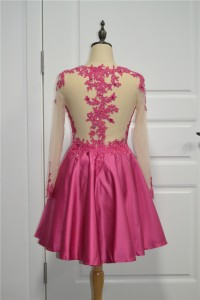 Elegant Beaded See Through Pink Prom Party Dress Scoop Long Sleeves With Crystals