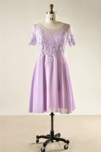 A Line Scoop Neck Short Sleeve Lilac Chiffon Lace Plus Size Bridesmaid Prom Dress