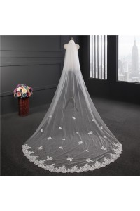 Beautiful Lace Tulle Wedding Bridal Cathedral Veil