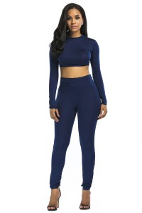 Stretch High Neck Long Sleeve Two Piece Bodycon Yoga Jumpsuit
