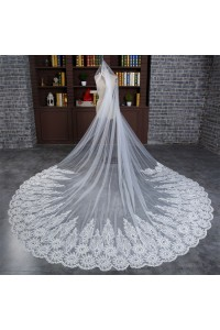 Stunning One Tier Tulle Lace Edge Wedding Bridal Cathedral Veil