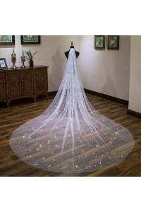 Gorgeous Sparkly Wedding Bridal Cathedral Veil