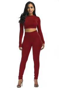 Stretch High Neck Long Sleeve Two Piece Bodycon Yoga Burgundy Jumpsuit
